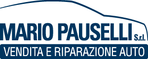 Mario Pauselli Srl