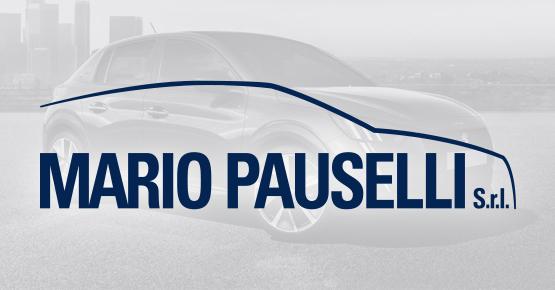 Pauselli, veicoli plurimarca